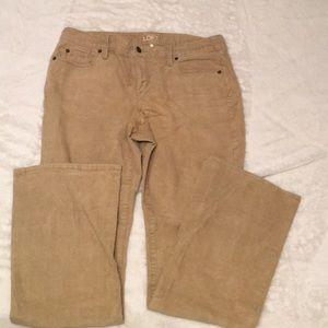 Loft Curvy Bootcut Size 10 khaki corduroy pants